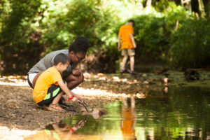 a camper and counselor poking sticks into a stream