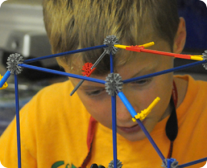 boy science project