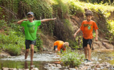 kids walking through a stream
